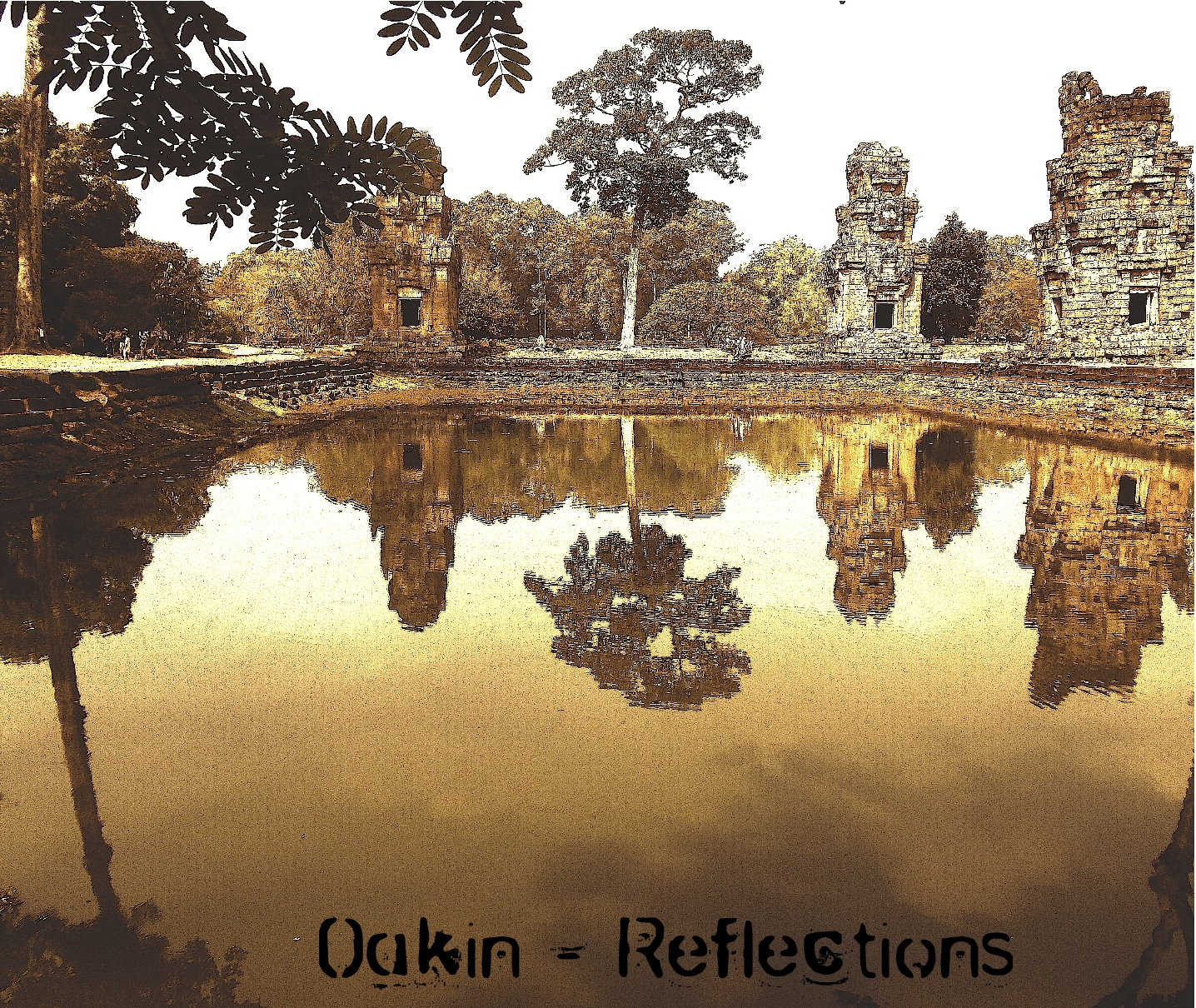 oakin_reflections