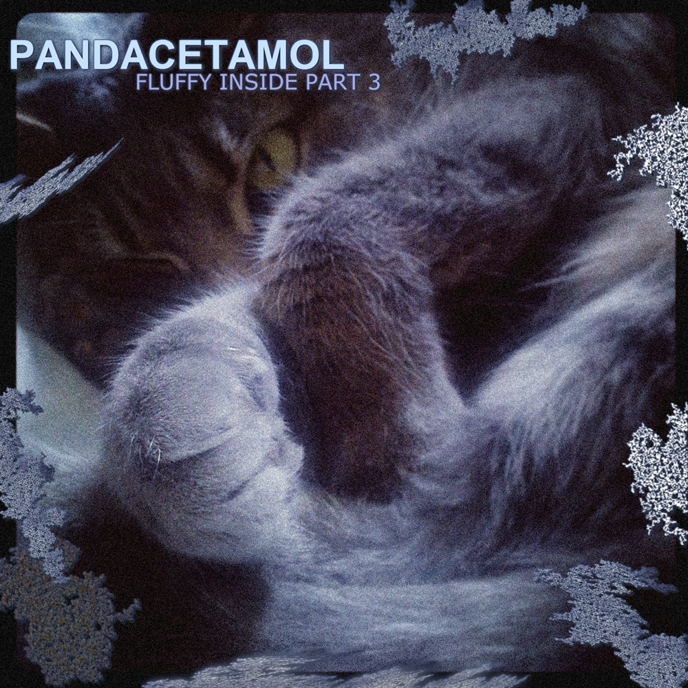 Cover_Pandacetamol_Fluffy_Inside_3